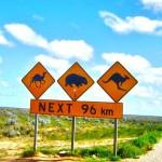Плюсы и минусы жизни в Австралии. Жизнь в Австралии. Видео