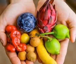 Мир тропических фруктов Брисбен