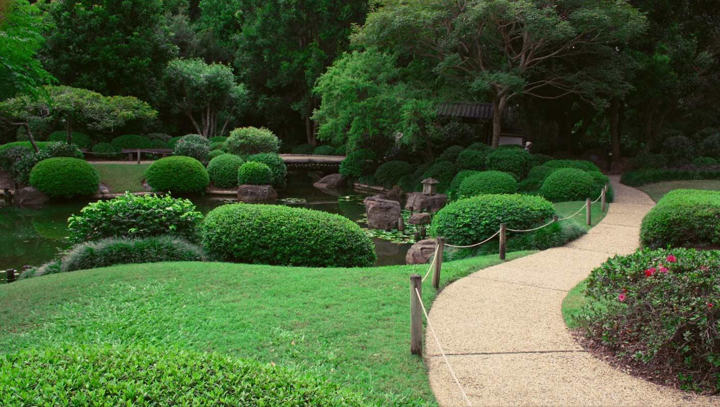 Ботанический-Сад-Брисбена