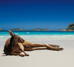 Фотографии Австралии