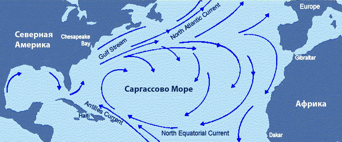 Саргассово море - самое большое море в мире